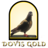 🔥120+ REP 🔥🔒DOVIS GOLD 🔒[PA... - last post by DovioGoldShopas